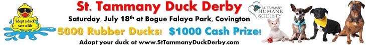 www.duckrace.com