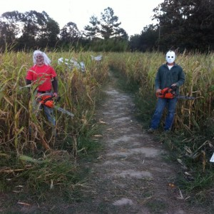 Creepy greeters lurking in Steele's corn maze!